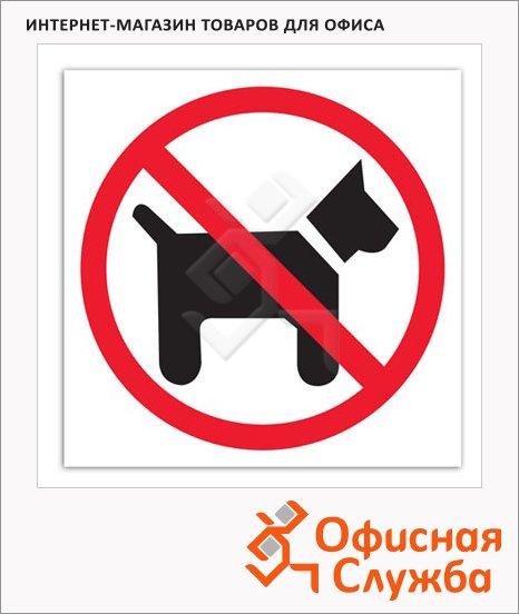 Знак Вход с животными запрещен Apli 114х114мм, самоклеящаяся пленка из полиэстера, 846