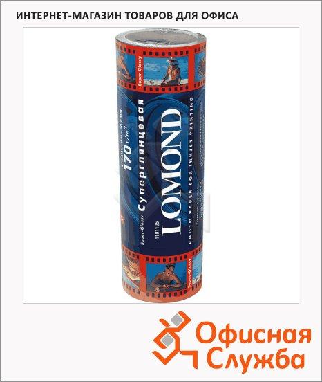 ������ ��������������� Lomond 210�� � 8�, 170�/�2, �������������, 1101105