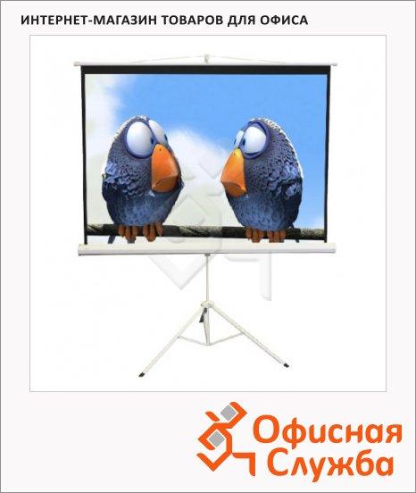 Экран для проектора мобильный Elite Screens 183x244см, на треноге