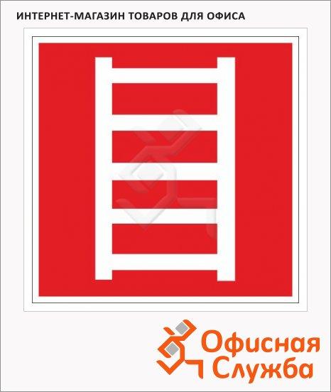 фото: Знак Пожарная лестница 200х200мм самоклеящаяся пленка ПВХ, F03
