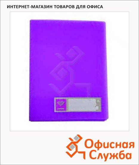 Папка на 4-х кольцах А4 Бюрократ Crystal фиолетовая, CR0527/4Rvio