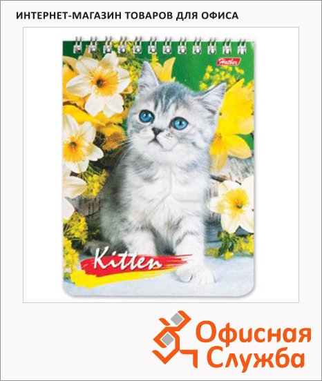 Блокнот Hatber Милые котята, А6, 40 листов, в клетку, на спирали, лакированный картон