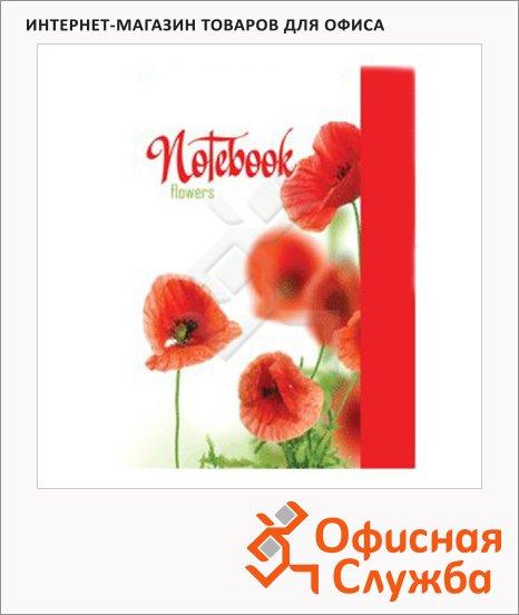 Блокнот Brauberg Красные маки, А6, 80 листов, в клетку, на сшивке, ламинированный картон/ лак