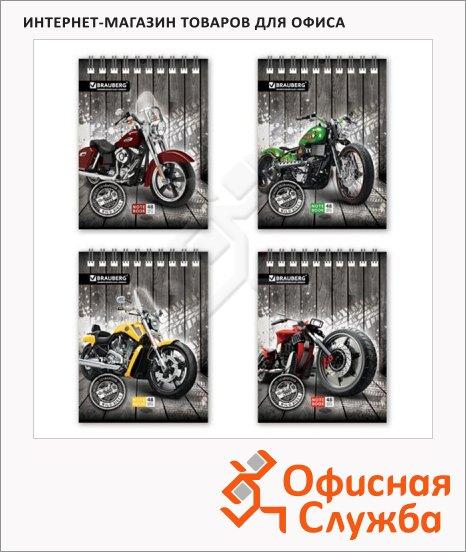 ������� Brauberg Wild Bikes, �6, 48 ������, � ������, �� �������, ���������� ������, ������� 4 ����