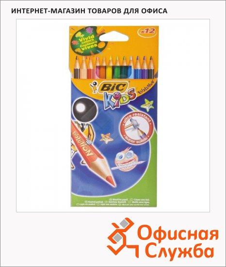 Набор цветных карандашей Bic Evolution 12 цветов, пластиковые, 9312