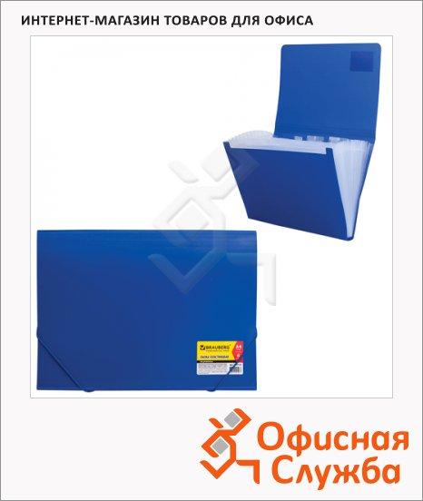 фото: Пластиковая папка на резинке Brauberg Business синяя A4, 224144