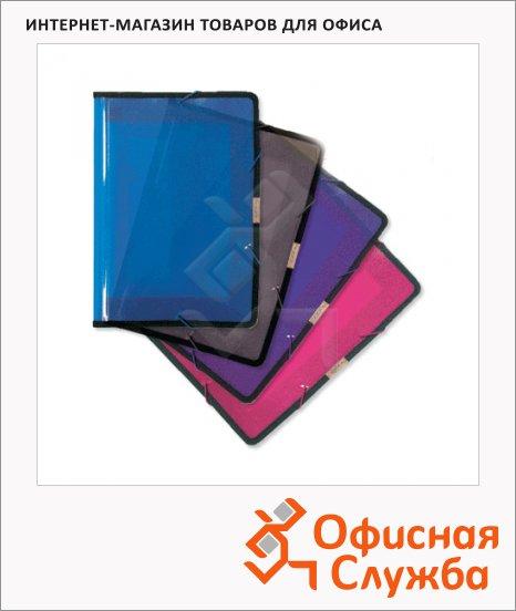 Пластиковая папка на резинке Brauberg ассорти, A4, до 300 листов