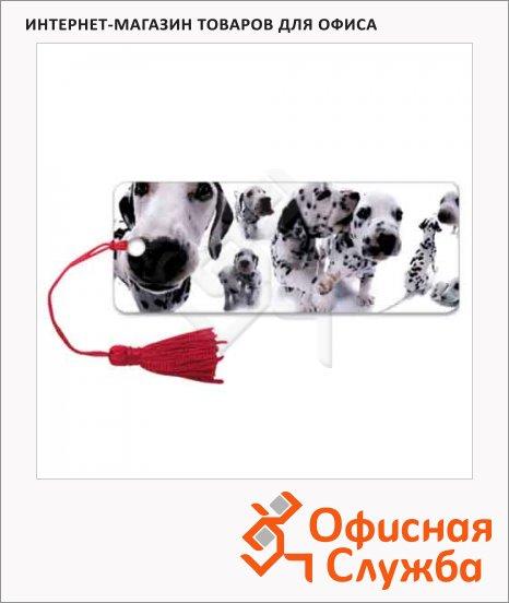 Закладка для книг Brauberg Далматинцы, объемная с движением, шнурок-завязка