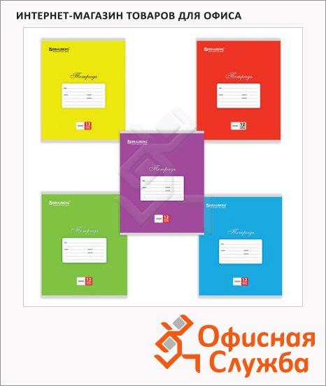 Тетрадь школьная Brauberg Классика ассорти, А5, 12 листов, на скрепке, мелованный картон, в линейку