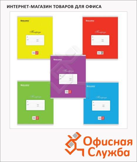 Тетрадь школьная Brauberg Классика ассорти, А5, 12 листов, на скрепке, мелованный картон, косая в линейку
