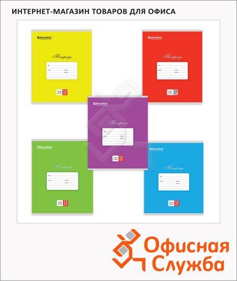 Тетрадь школьная Brauberg Классика ассорти, А5, 12 листов, на скрепке, мелованный картон, узкая в линейку