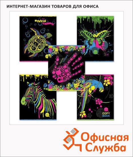 Тетрадь общая Hatber Neon Color, А5, 48 листов, в клетку, на скрепке, мелованный картон/ лак