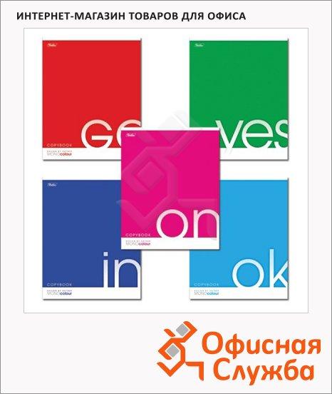 Тетрадь общая Hatber Mono Color, А5, 96 листов, в клетку, на скрепке, лакированный картон