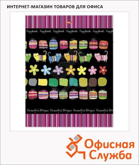 Тетрадь на кольцах Hatber Яркие полосы, A5, 120 листов, в клетку, ламинированный картон