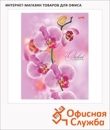 фото: Тетрадь на кольцах Hatber Розовая орхидея А5, 120 листов, в клетку, ламинированный картон