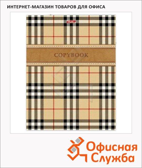 Тетрадь на кольцах Hatber Шотландка, A5, 240 листов, в клетку, ламинированный картон