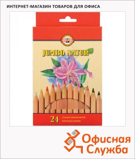 Набор цветных карандашей Koh-I-Noor Jumbo Natur 24 цвета, 2174N