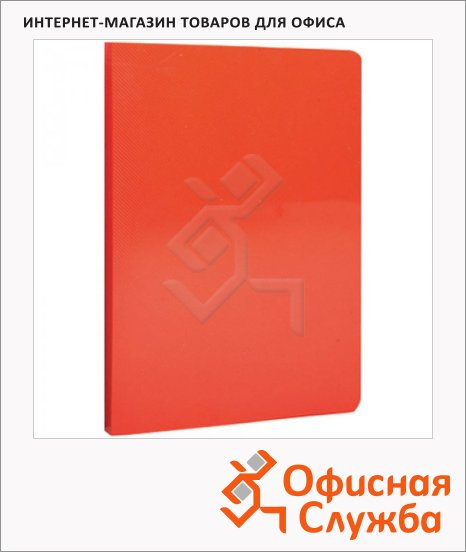 Папка файловая Berlingo Line красная, А4, на 20 файлов