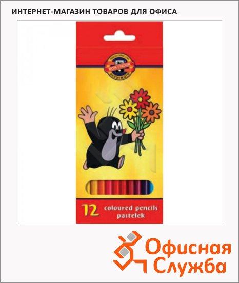 Набор цветных карандашей Koh-I-Noor Крот 12 цветов