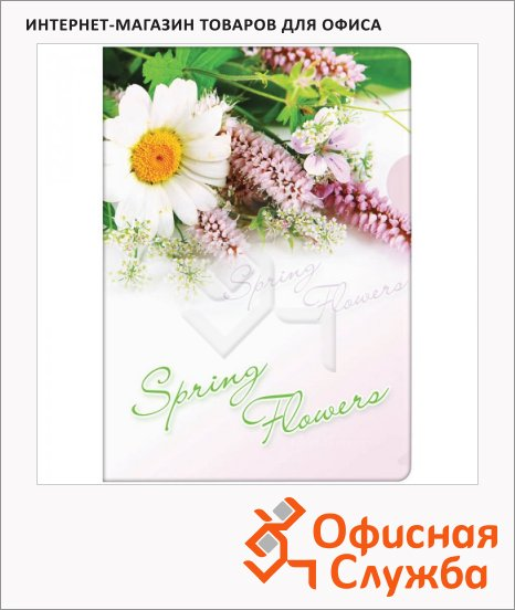Папка-уголок Berlingo Spring Flowers, А4, 180мкм