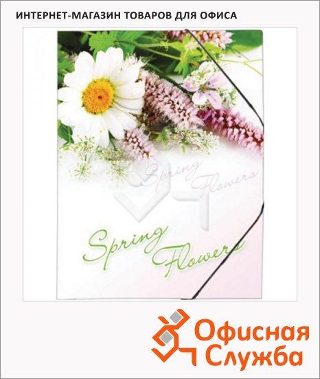Пластиковая папка на резинке Berlingo Spring Flowers, А4