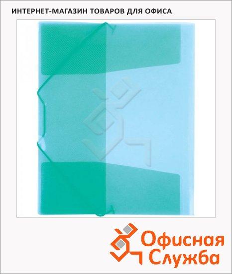 фото: Пластиковая папка на резинке Berlingo зеленая А4