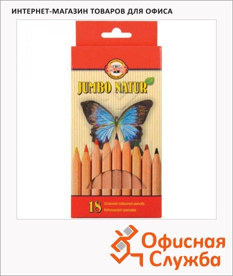 фото: Набор цветных карандашей Koh-I-Noor Jumbo Natur 18 цветов 2173