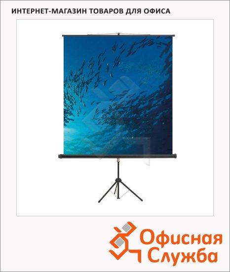 Экран для проектора мобильный Magnetoplan Cineflex 200х200см, на треноге
