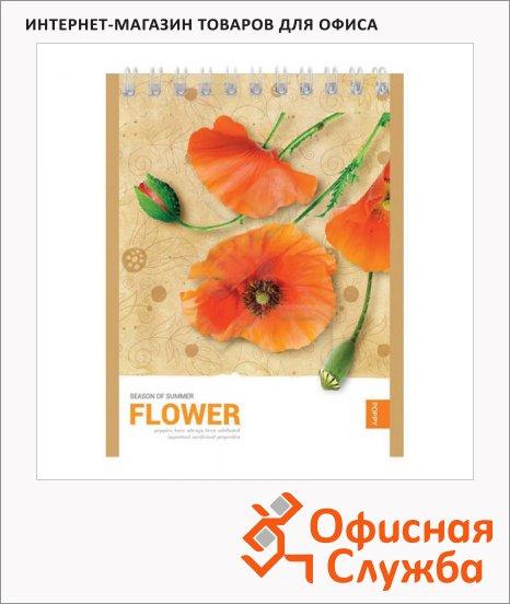 Блокнот Office Space Цветы Летний сезон, А6, 40 листов, в клетку, на спирали, мелованный картон