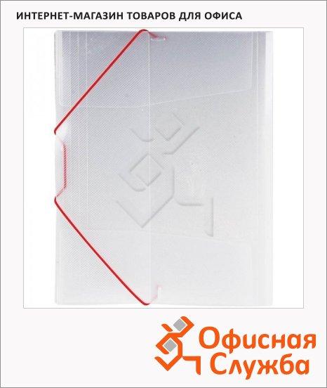 фото: Пластиковая папка на резинке Berlingo матовая А4