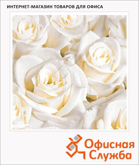 Салфетки Duni White dreams, 33х33см, 3 слоя, 20шт