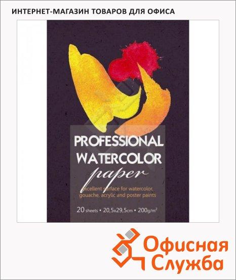 Папка для акварели Kroyter Professional Watercolor paper А4, 200 г/м2, 20 листов
