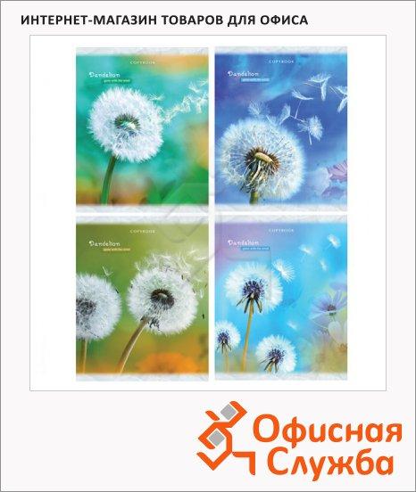 фото: Тетрадь общая Одуван A5, 48 листов, в клетку