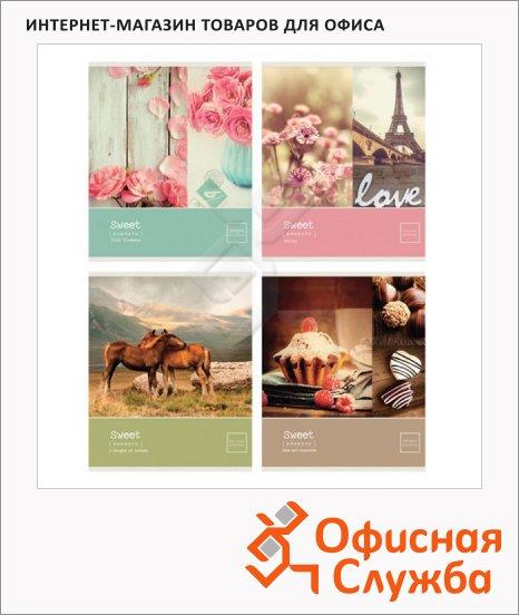 Тетрадь общая Office Space Sweet moments, A5, 48 листов, в клетку, на скрепке, мелованный картон