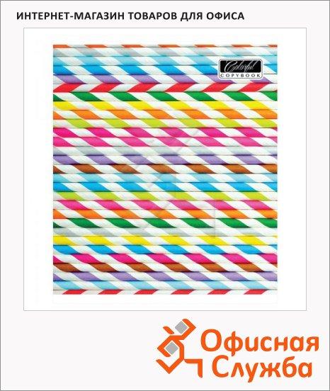 Тетрадь общая Magic Lines Яркие полоски, A4, 60 листов, в клетку, на скрепке, лакированный картон