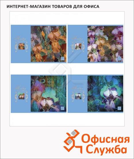 фото: Альбом для рисования Bg Jris А4, 100г/м2, 40 листов, на скрепке