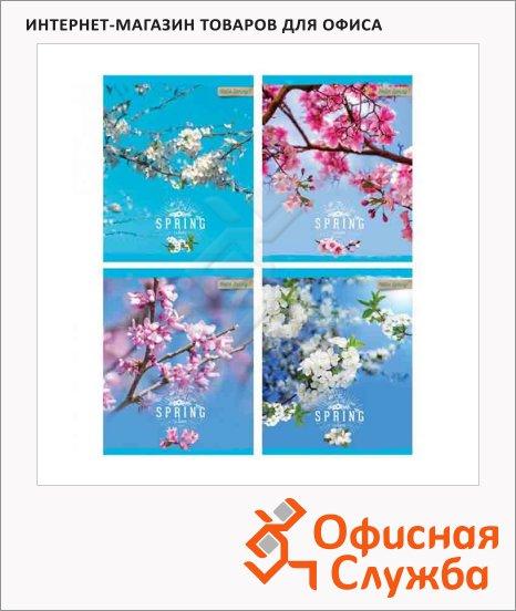 фото: Тетрадь общая Hello Spring! А5, 80 листов, в клетку