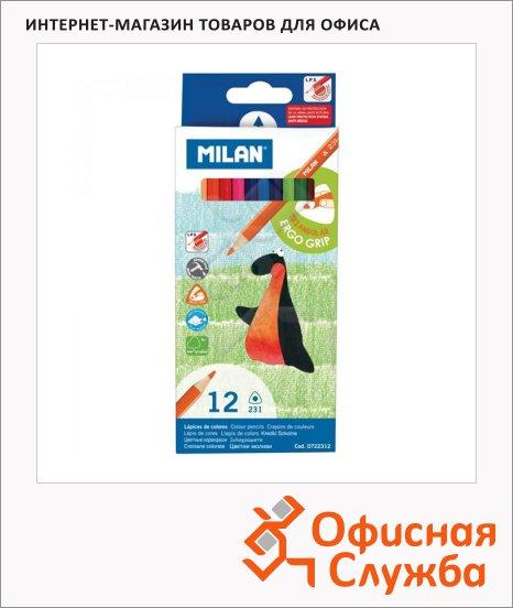 фото: Набор цветных карандашей Milan 231 12 цветов трехгранные, 722312