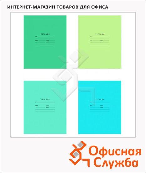 Тетрадь школьная Bg Отличная, А5, 12 листов, на скрепке, мелованный картон, в клетку