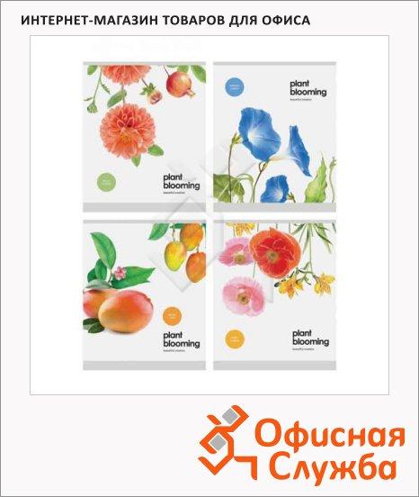фото: Тетрадь общая Officespace Цветы Plant blooming А5, 48 листов, в клетку, на скрепке, мелованный картон/ лак