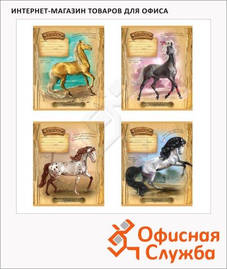 фото: Тетрадь школьная Ах, вы кони, мои кони А5, 12 листов, в линейку, на скрепке, мелованный картон/ лак