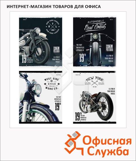 Тетрадь общая Office Space Motorbike, А5, 48 листов, в клетку, на скрепке, мелованный картон