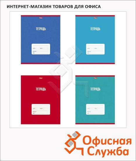 Тетрадь школьная Hatber Цветная тетрадь, А5, 18 листов, в клетку, на скрепке, мелованный картон