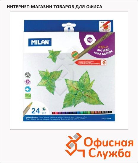 ����� ������� ���������� Milan 213 24 �����, ����������, 722124