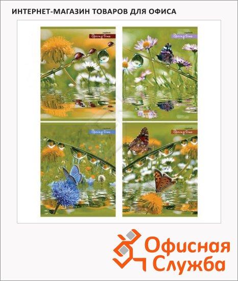 фото: Тетрадь общая Spring Time A5, 48 листов, в клетку, на скрепке, мелованный картон
