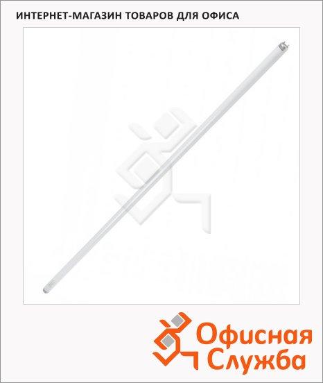 фото: Лампа люминесцентная Osram Basic L 36Вт G13, 6500К, холодный дневной свет, трубка