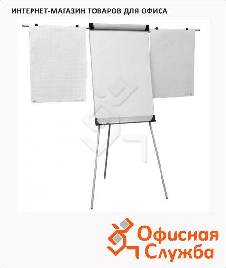 Флипчарт магнитный маркерный 2x3 Eurochart 66х100см, белый, на треноге