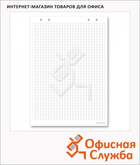 Блокнот для флипчарта 2x3 B01 58х83см, в клетку, 10 листов