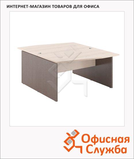 Стол письменный Skyland Xten X2CT 169.1, двойной, 1600х1810х750мм, береза норд/рено