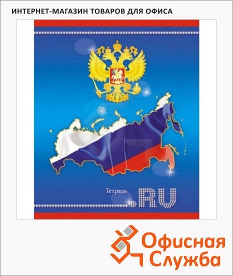фото: Тетрадь общая Апплика Российские символы синяя А5, 48 листов, в клетку, на скрепке, мелованный картон